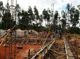 woininata site - progress in 2 days
