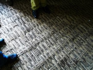 bursa school - old block floor (5years - bamboo!!!)
