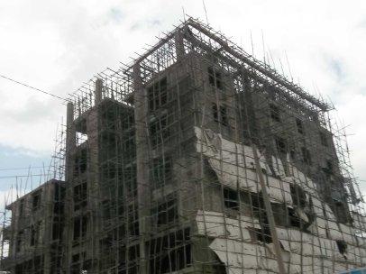 everpresent construction - eucalyptsu scafolding