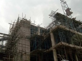 everpresent construction - eucalyptus scafolding