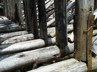eucalyptus trusses - joining