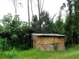 bursa school - latrines in bamboo