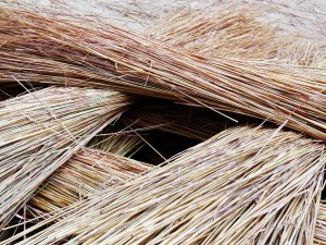straw bunches ready to be woven