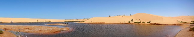 dunes in the city and stagnant water