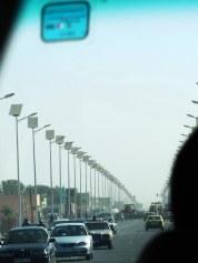 solar lamps ... a bit dense