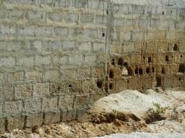 concrete versus salt